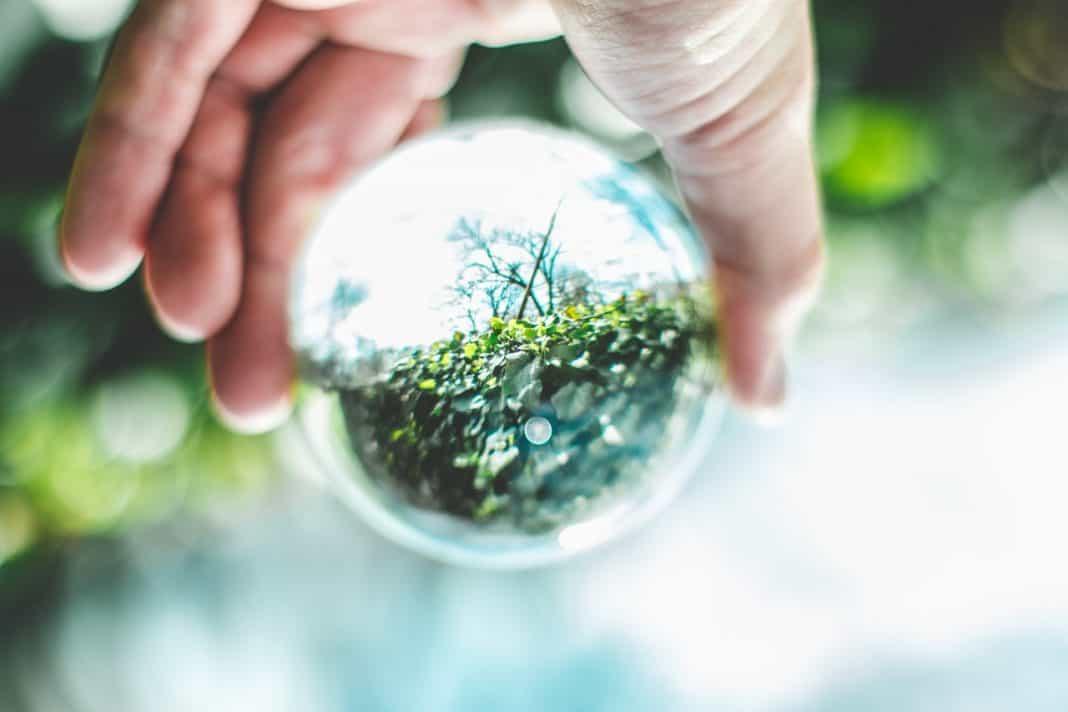 Fotografia de uma mão segurando um globo com plantas dentro